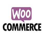 Création et optimisation de site web Wix